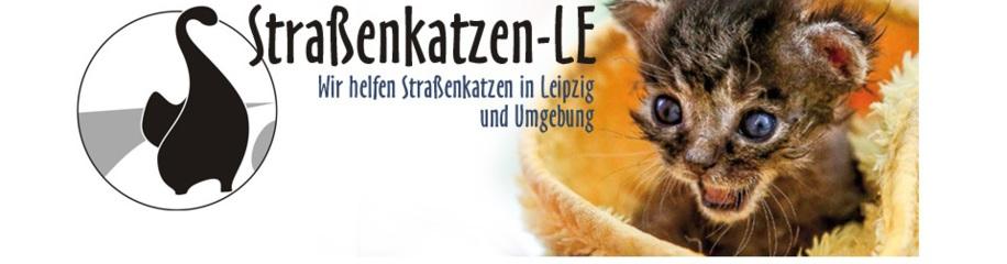 Straßenkatzen-LE